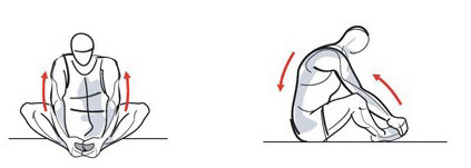Упражнение растяжка спины