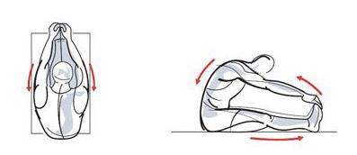 Упражнение продольная складка